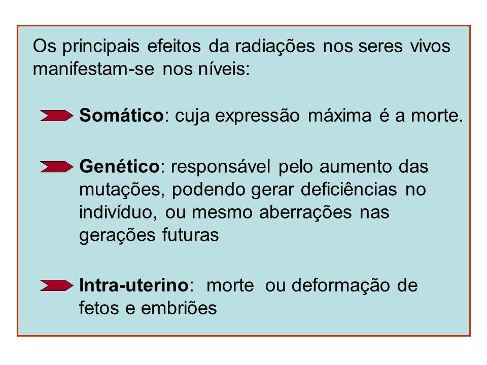 Os principais efeitos da radiações nos seres vivos