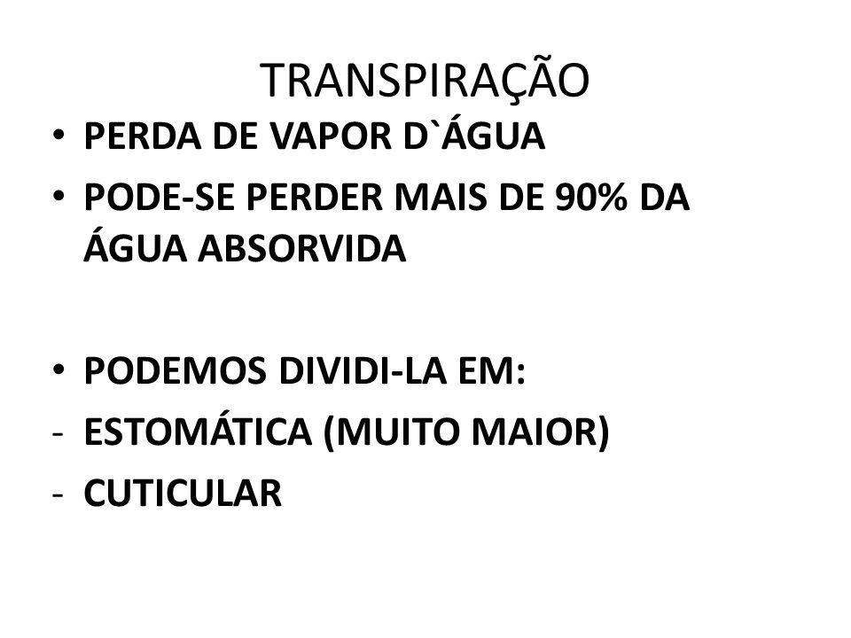 TRANSPIRAÇÃO PERDA DE VAPOR D`ÁGUA
