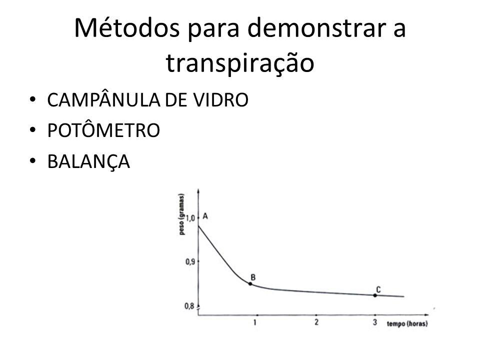 Métodos para demonstrar a transpiração
