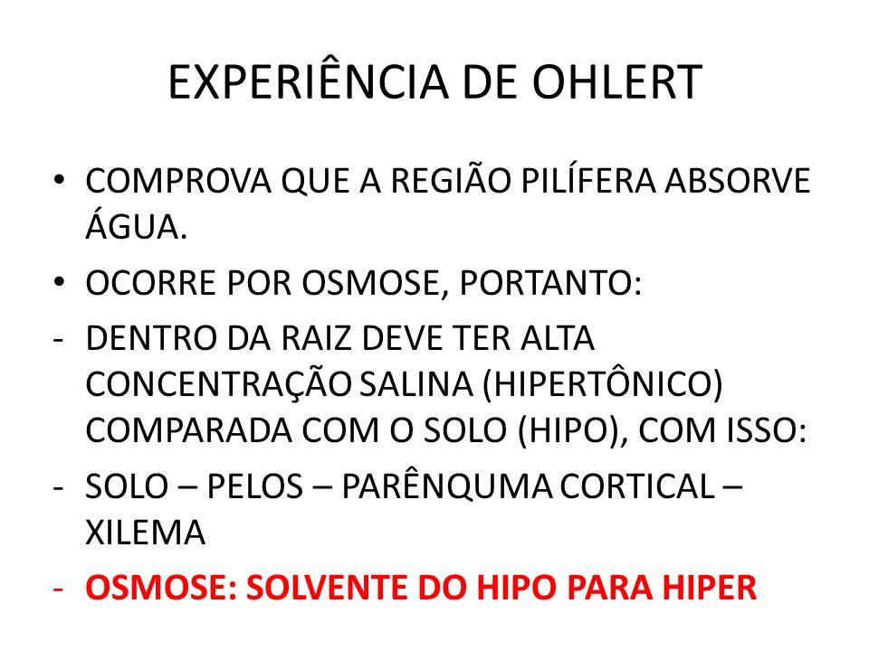 EXPERIÊNCIA DE OHLERT COMPROVA QUE A REGIÃO PILÍFERA ABSORVE ÁGUA.
