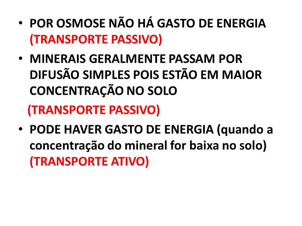 POR OSMOSE NÃO HÁ GASTO DE ENERGIA (TRANSPORTE PASSIVO)