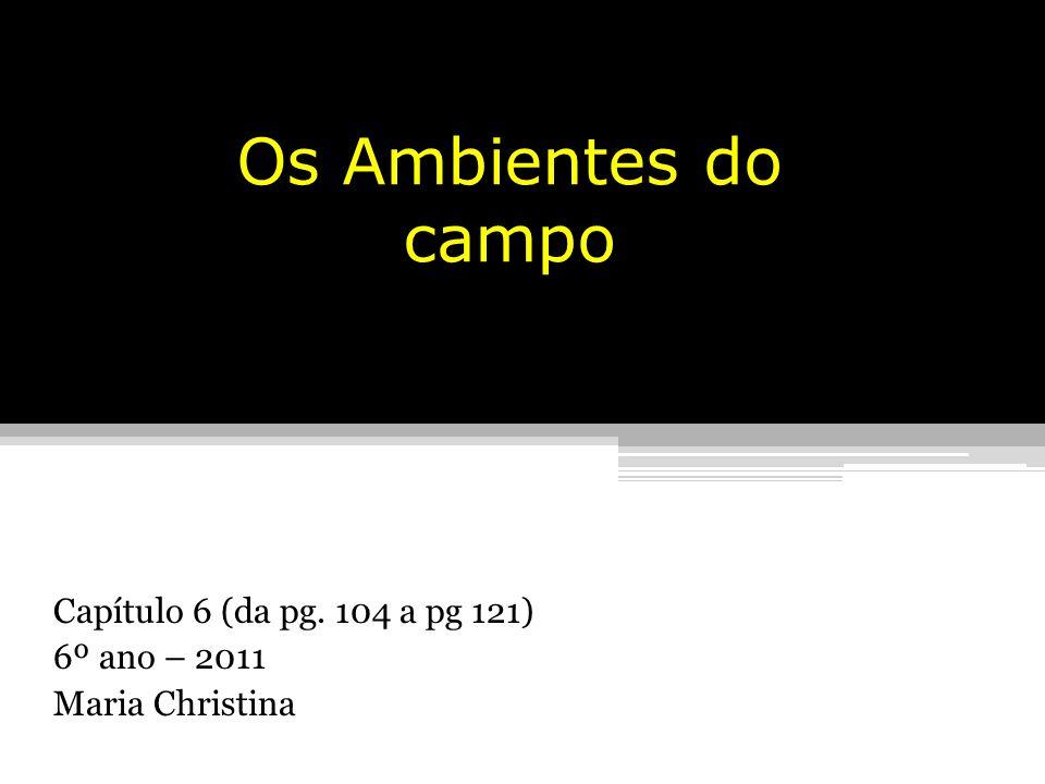 Capítulo 6 (da pg. 104 a pg 121) 6º ano – 2011 Maria Christina