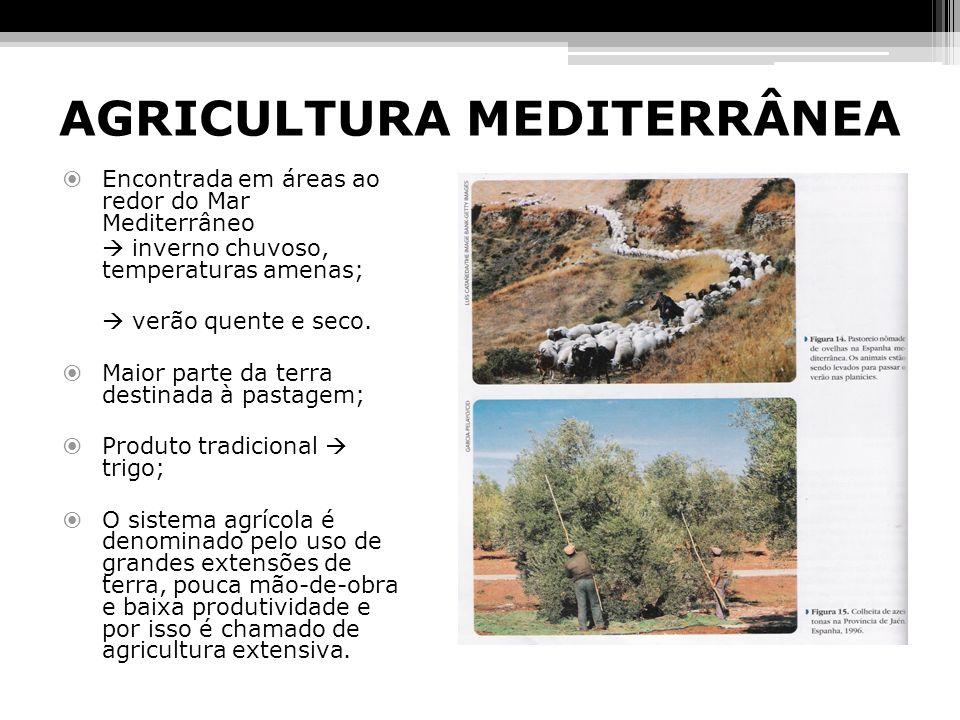 AGRICULTURA MEDITERRÂNEA
