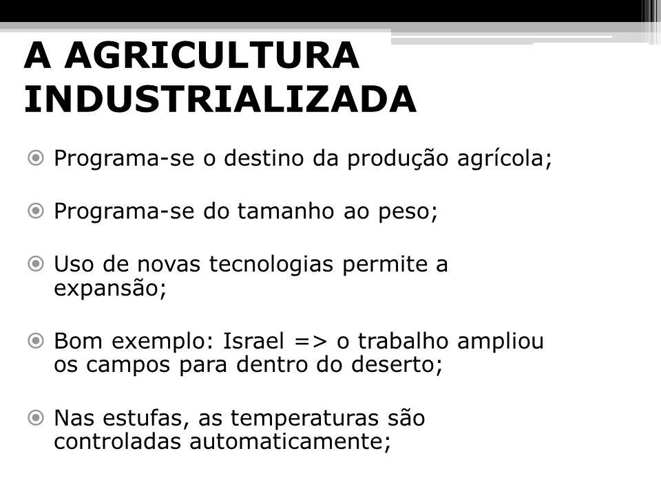 A AGRICULTURA INDUSTRIALIZADA