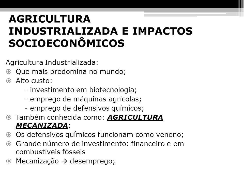 AGRICULTURA INDUSTRIALIZADA E IMPACTOS SOCIOECONÔMICOS
