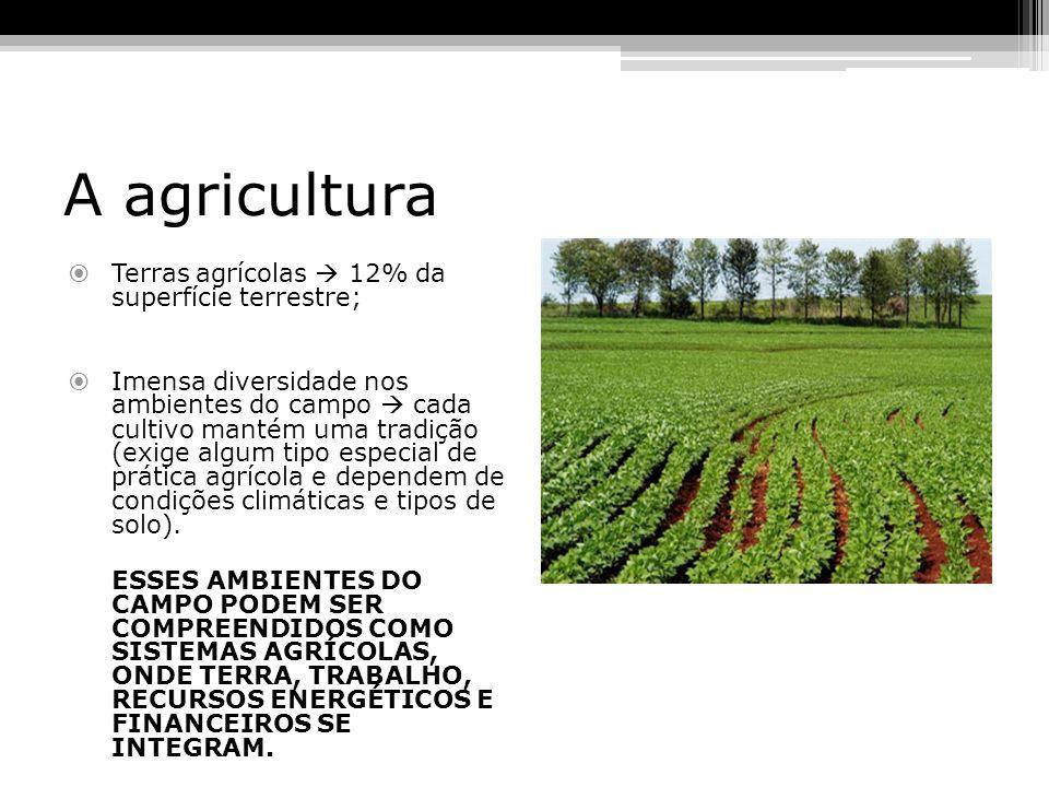 A agricultura Terras agrícolas  12% da superfície terrestre;
