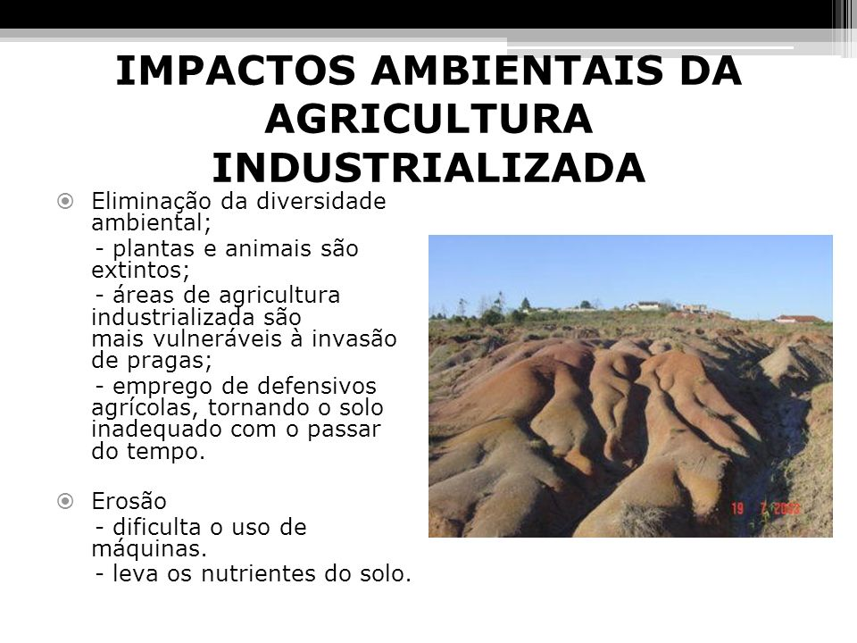 IMPACTOS AMBIENTAIS DA AGRICULTURA INDUSTRIALIZADA