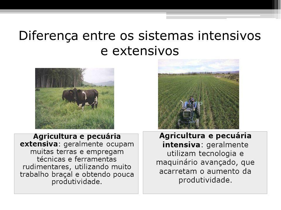 Diferença entre os sistemas intensivos e extensivos