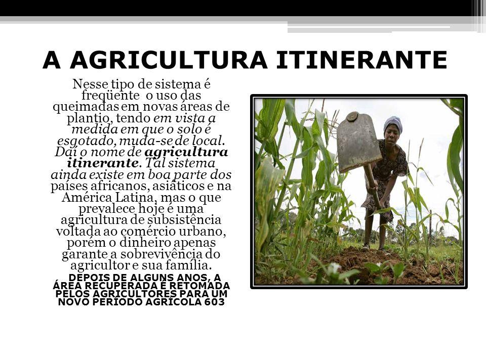 A AGRICULTURA ITINERANTE