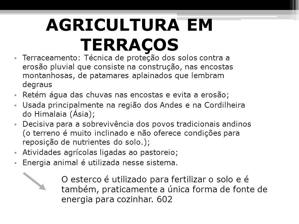 AGRICULTURA EM TERRAÇOS