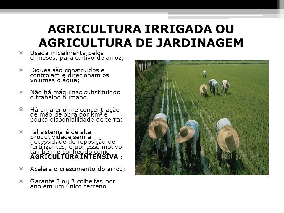 AGRICULTURA IRRIGADA OU AGRICULTURA DE JARDINAGEM