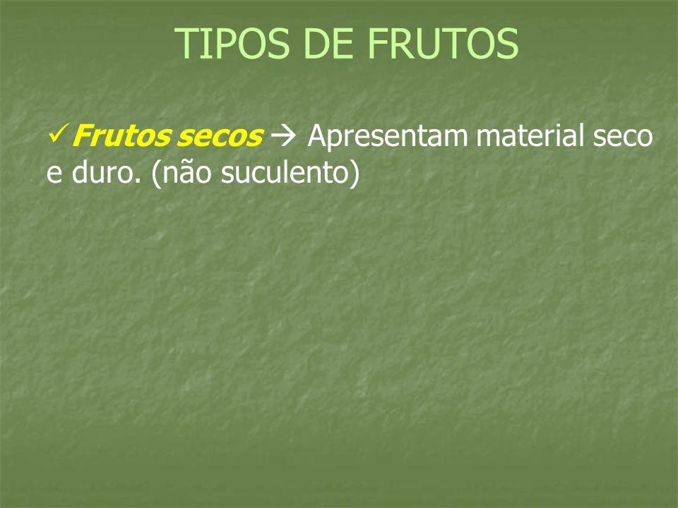 TIPOS DE FRUTOS Frutos secos  Apresentam material seco e duro. (não suculento)