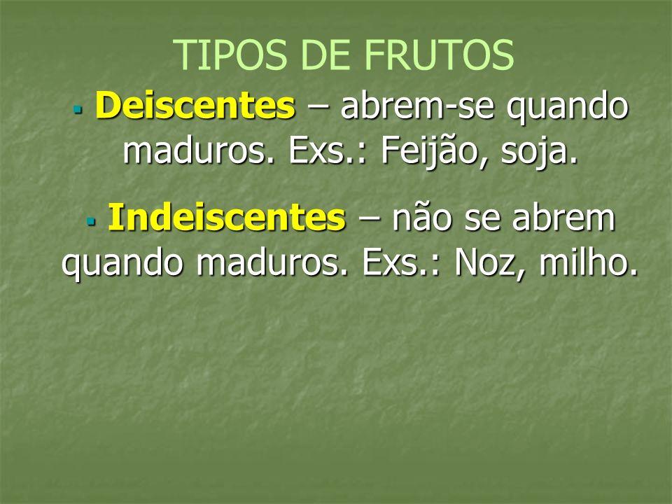 TIPOS DE FRUTOS Deiscentes – abrem-se quando maduros.