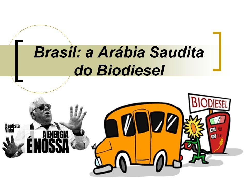 Brasil: a Arábia Saudita do Biodiesel