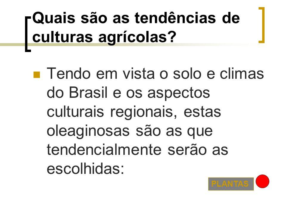 Quais são as tendências de culturas agrícolas