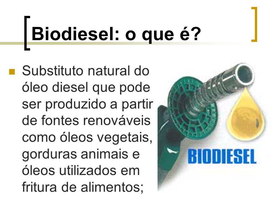 Biodiesel: o que é