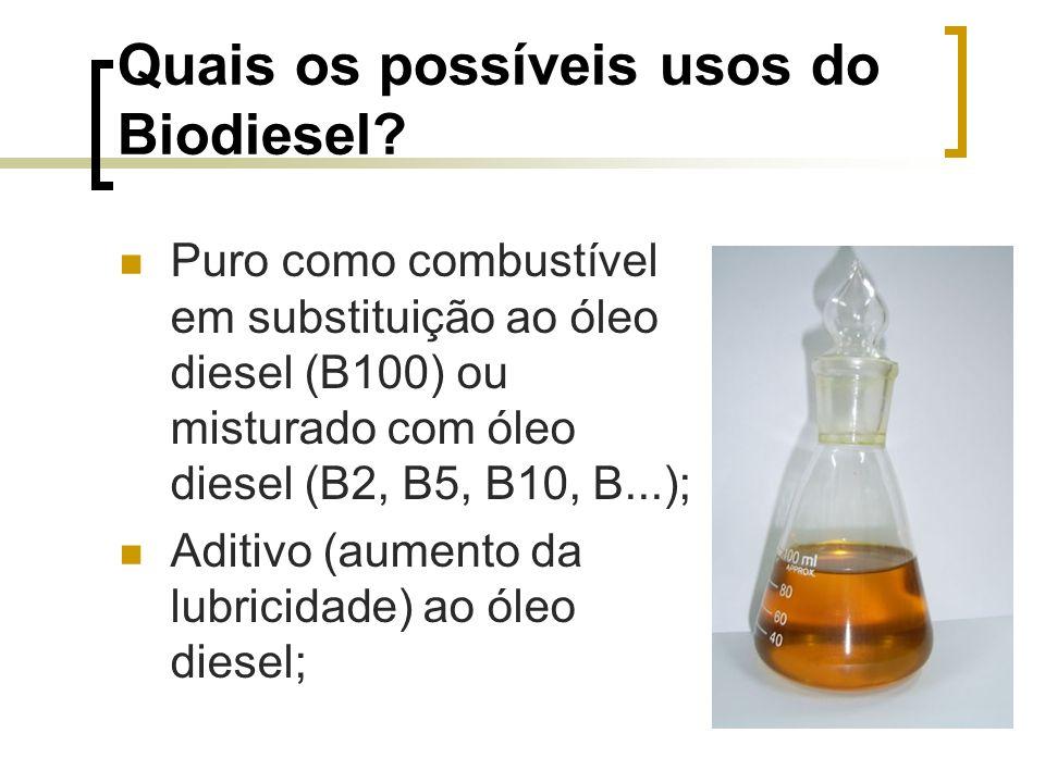Quais os possíveis usos do Biodiesel