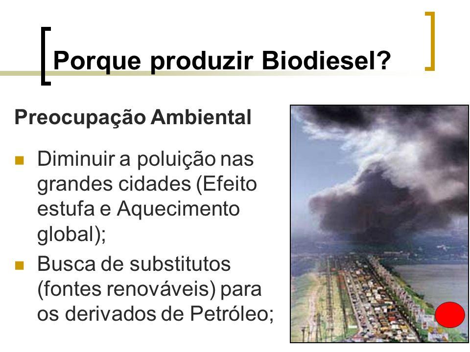 Porque produzir Biodiesel