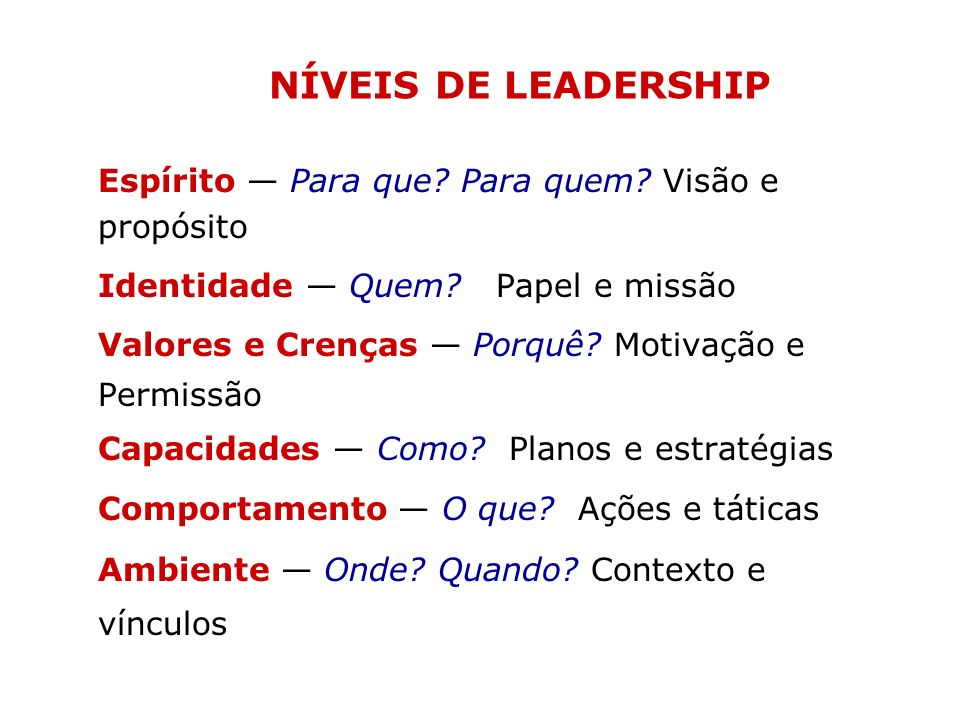 NÍVEIS DE LEADERSHIP Espírito — Para que Para quem Visão e propósito