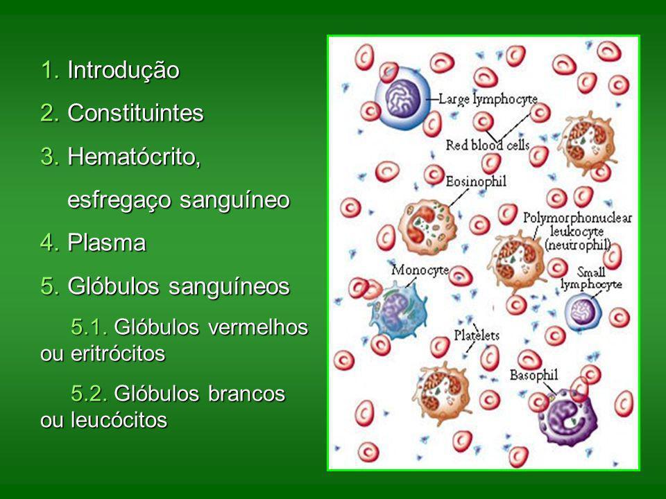 1. Introdução 2. Constituintes 3. Hematócrito, esfregaço sanguíneo