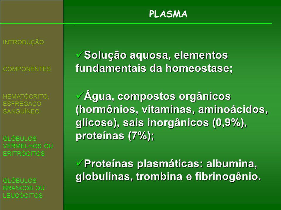 Solução aquosa, elementos fundamentais da homeostase;