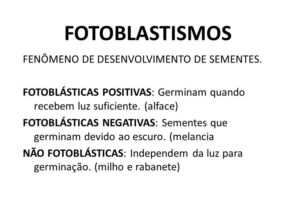 FOTOBLASTISMOS FENÔMENO DE DESENVOLVIMENTO DE SEMENTES.
