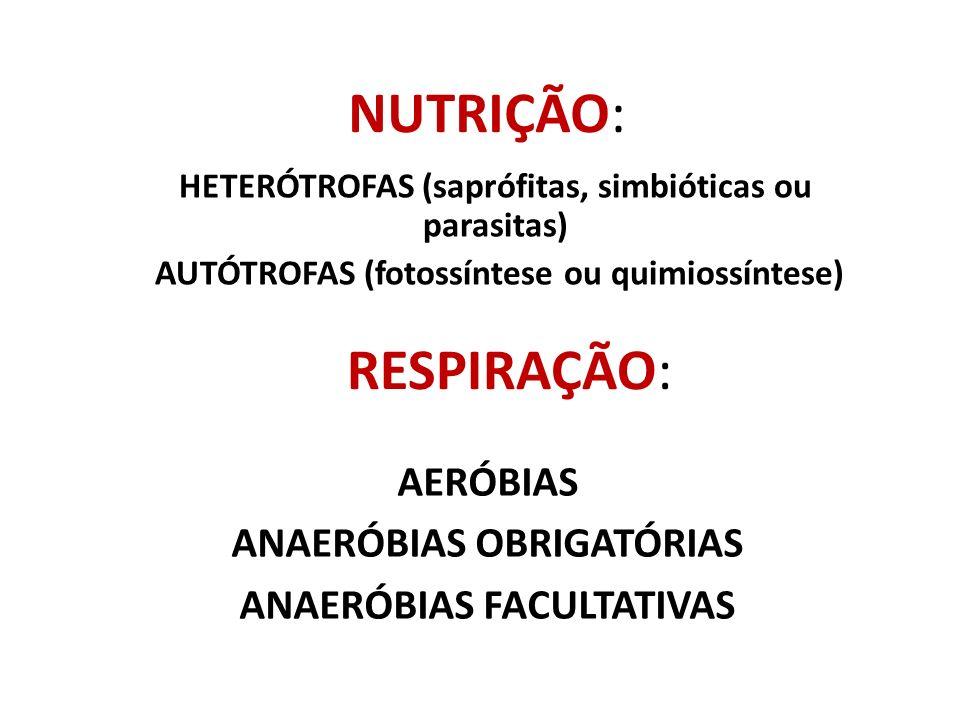 NUTRIÇÃO: RESPIRAÇÃO: AERÓBIAS ANAERÓBIAS OBRIGATÓRIAS