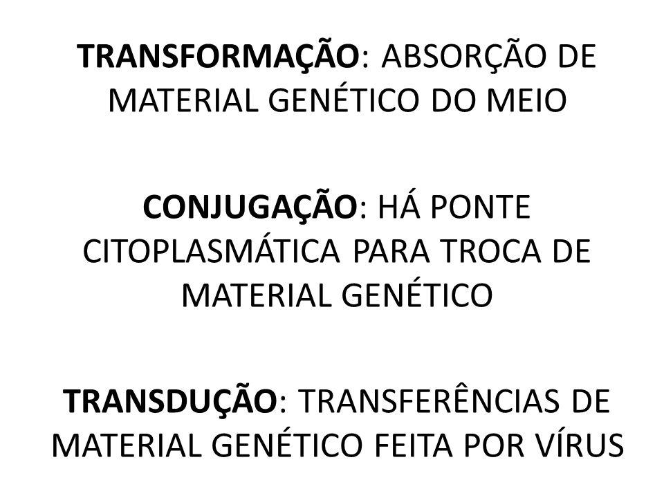 TRANSFORMAÇÃO: ABSORÇÃO DE MATERIAL GENÉTICO DO MEIO