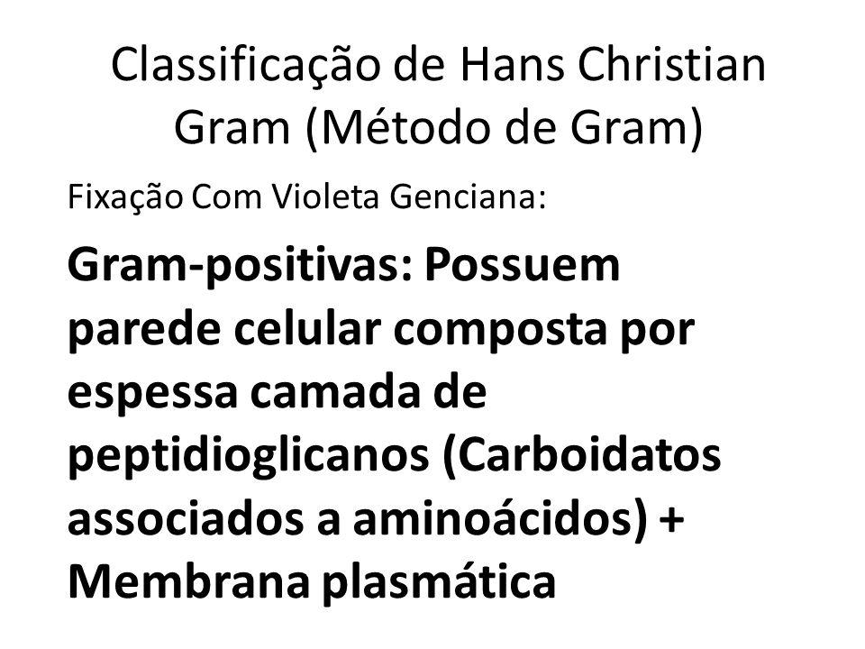 Classificação de Hans Christian Gram (Método de Gram)