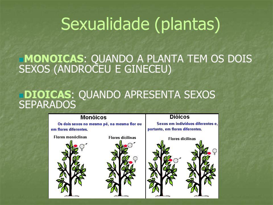 Sexualidade (plantas)