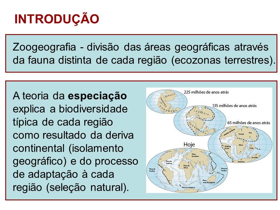 INTRODUÇÃO Zoogeografia - divisão das áreas geográficas através