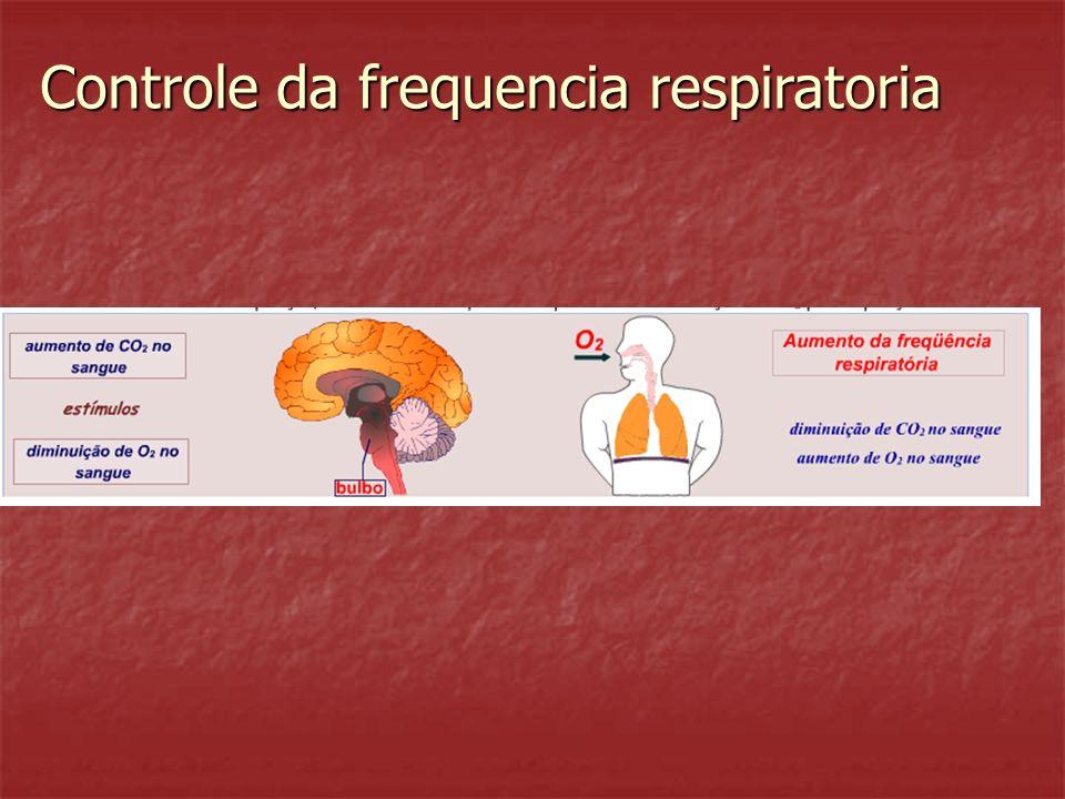 Controle da frequencia respiratoria