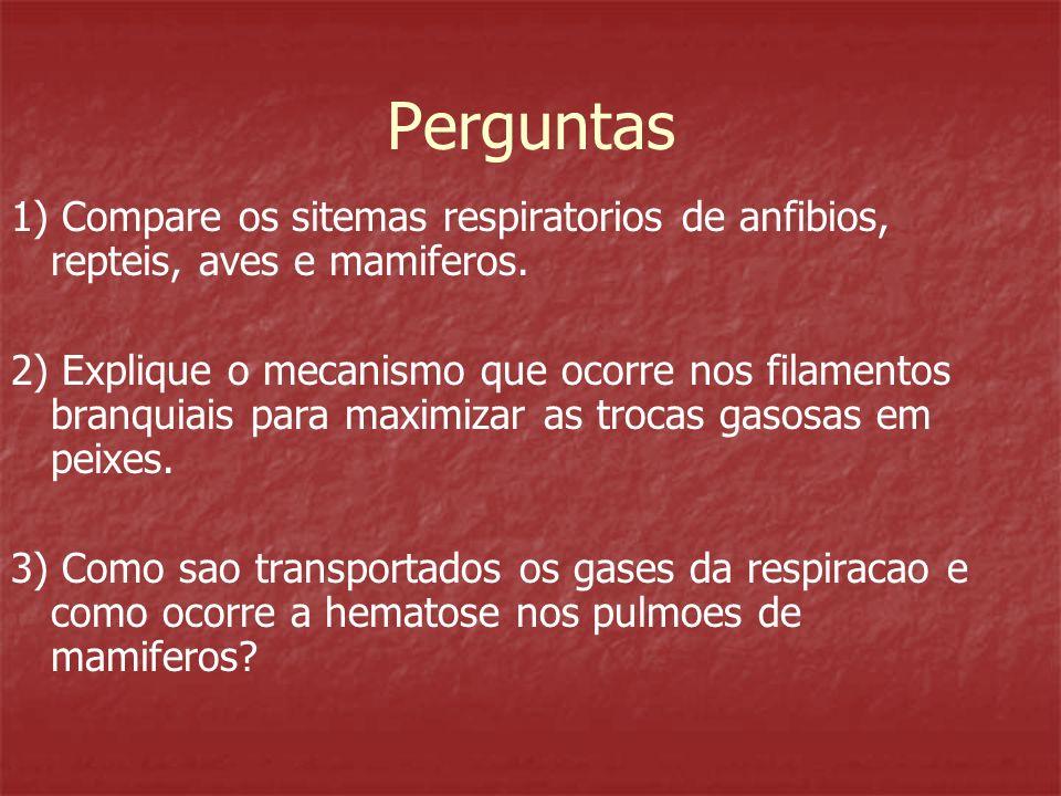 Perguntas 1) Compare os sitemas respiratorios de anfibios, repteis, aves e mamiferos.