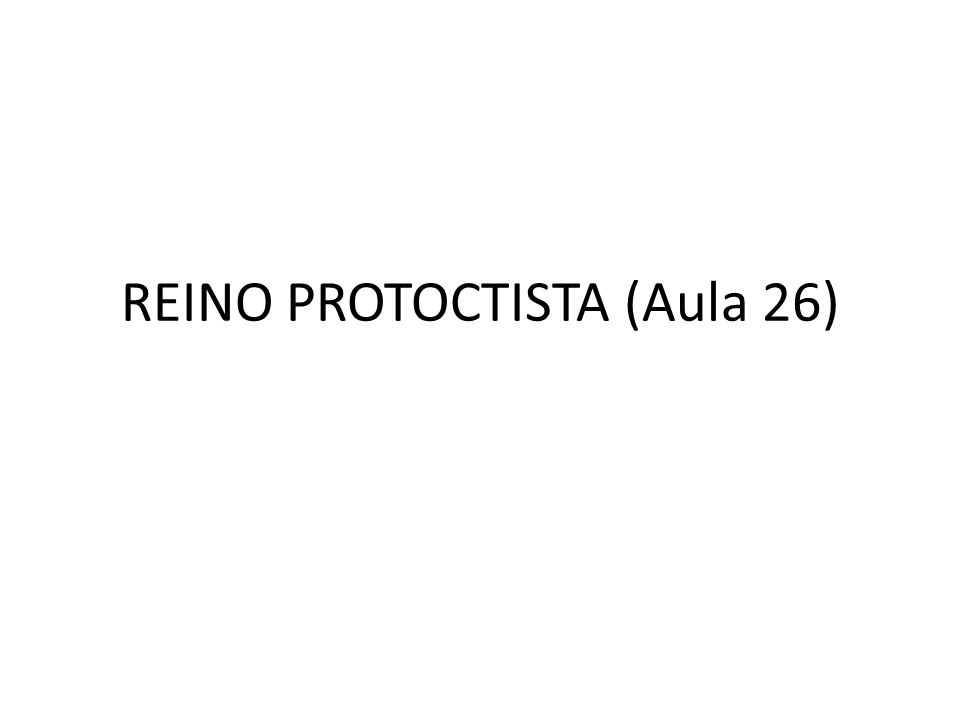 REINO PROTOCTISTA (Aula 26)