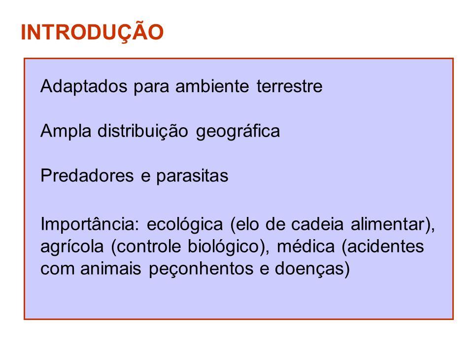 INTRODUÇÃO Adaptados para ambiente terrestre