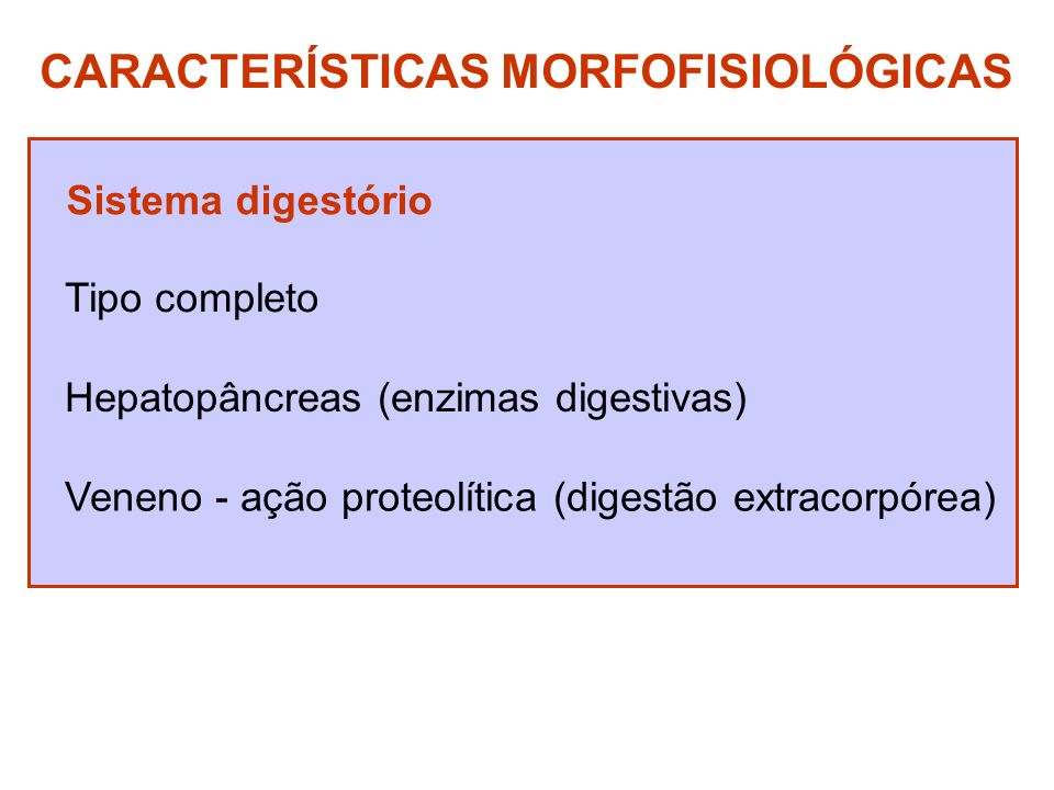 CARACTERÍSTICAS MORFOFISIOLÓGICAS