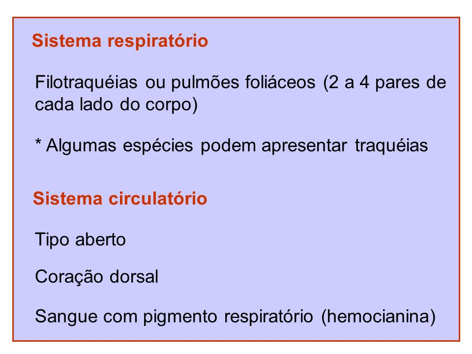 Sistema respiratórioFilotraquéias ou pulmões foliáceos (2 a 4 pares de. cada lado do corpo) * Algumas espécies podem apresentar traquéias.