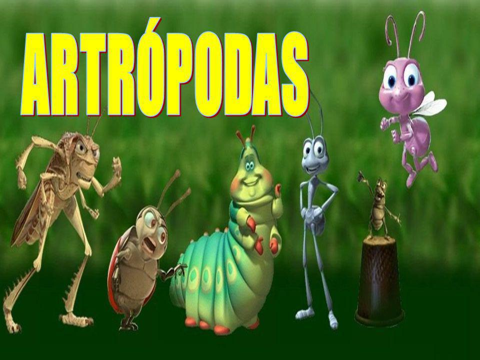ARTRÓPODAS