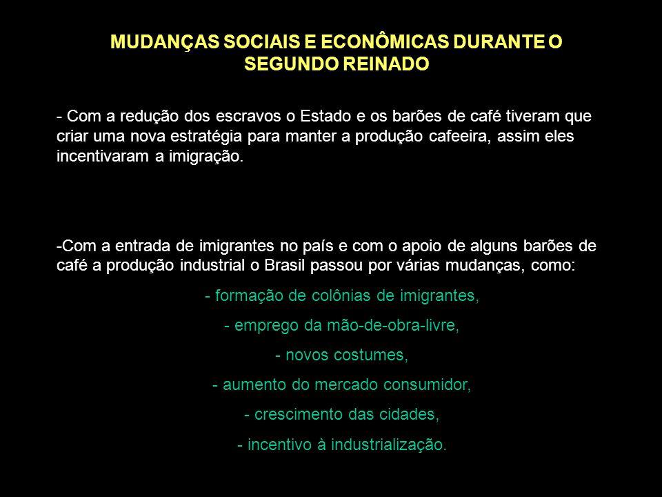 MUDANÇAS SOCIAIS E ECONÔMICAS DURANTE O SEGUNDO REINADO