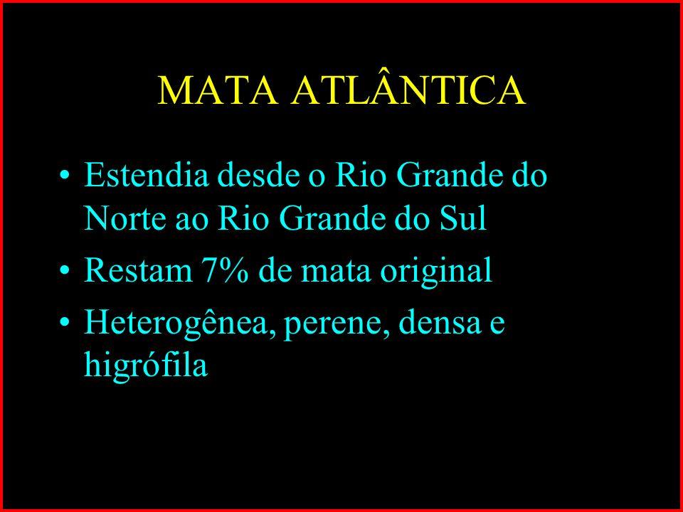 MATA ATLÂNTICA Estendia desde o Rio Grande do Norte ao Rio Grande do Sul. Restam 7% de mata original.