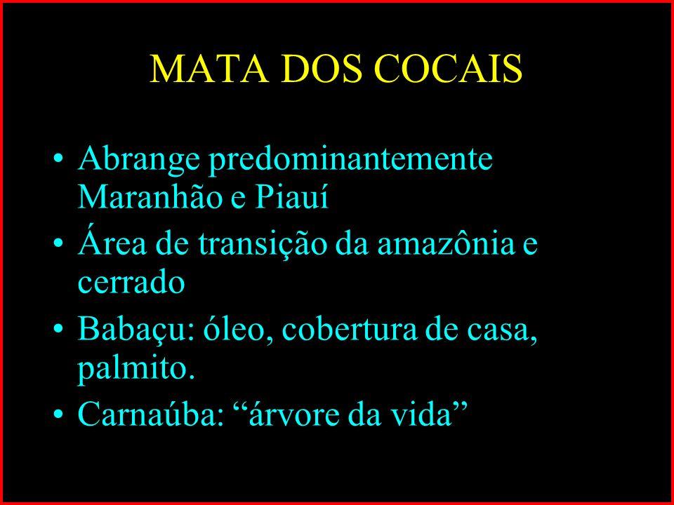 MATA DOS COCAIS Abrange predominantemente Maranhão e Piauí