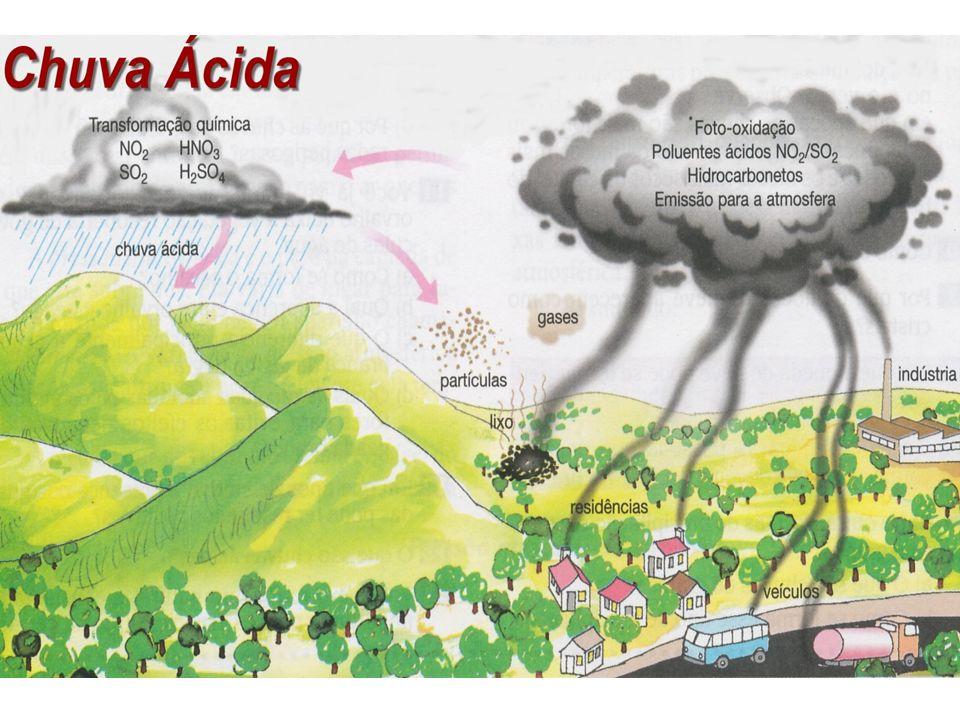 CHUVA ÁCIDA Reação de óxidos de nitrogênio e de enxofre com água (atmosfera) contaminação de rios, lagos e solo.