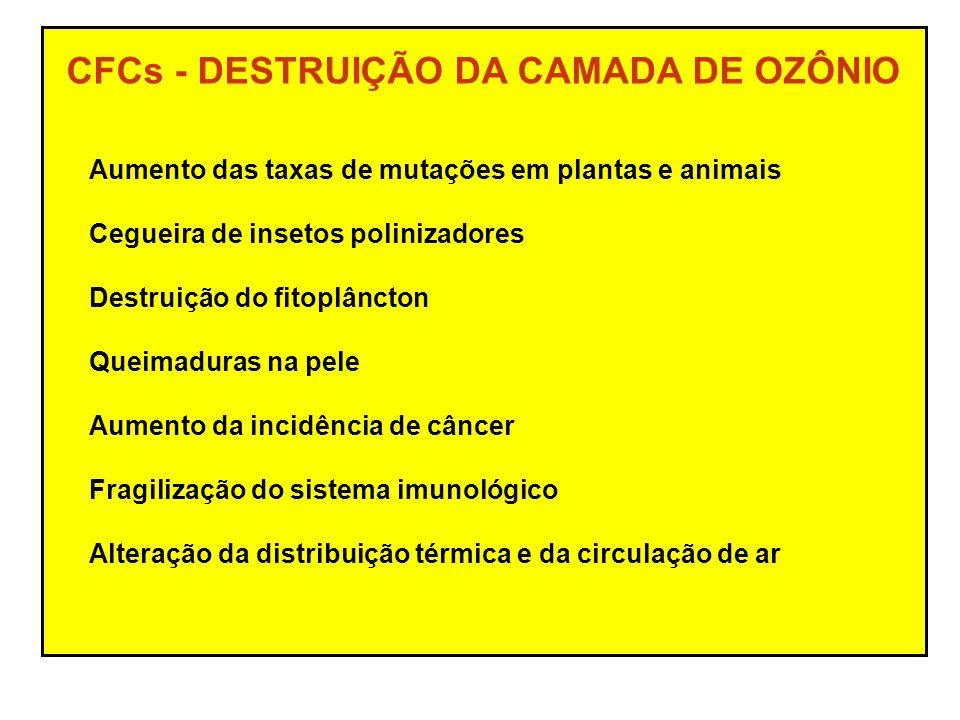CFCs - DESTRUIÇÃO DA CAMADA DE OZÔNIO
