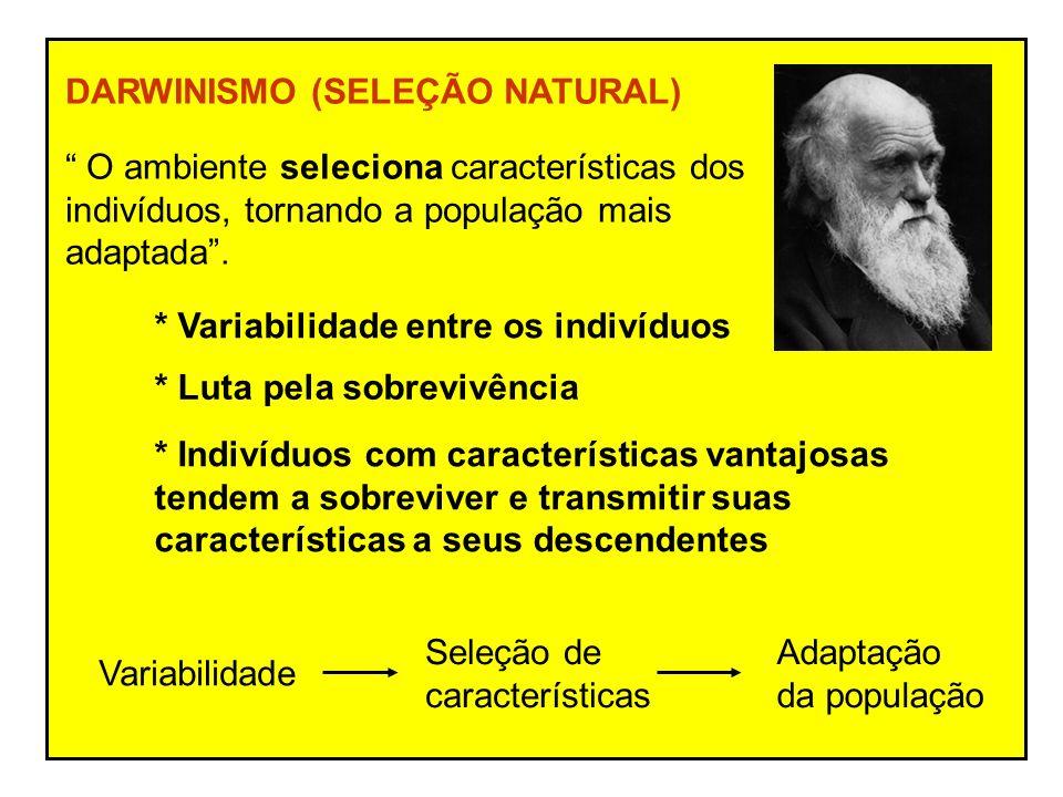 DARWINISMO (SELEÇÃO NATURAL)