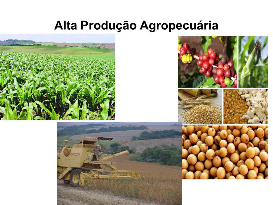 Alta Produção Agropecuária