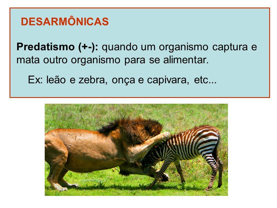 DESARMÔNICAS Predatismo (+-): quando um organismo captura e. mata outro organismo para se alimentar.