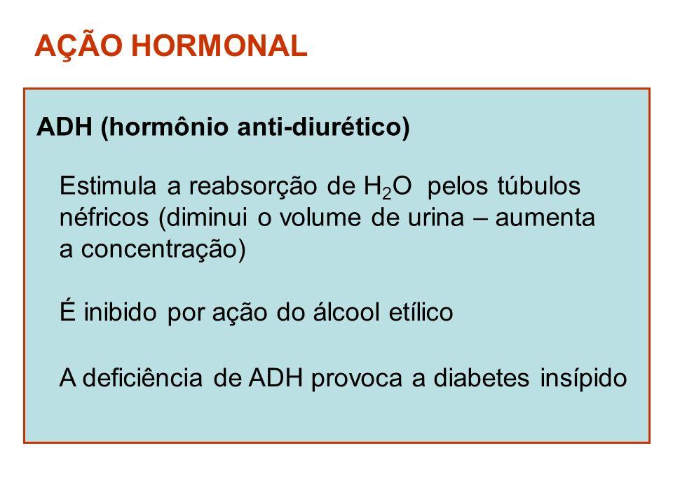 AÇÃO HORMONAL ADH (hormônio anti-diurético)