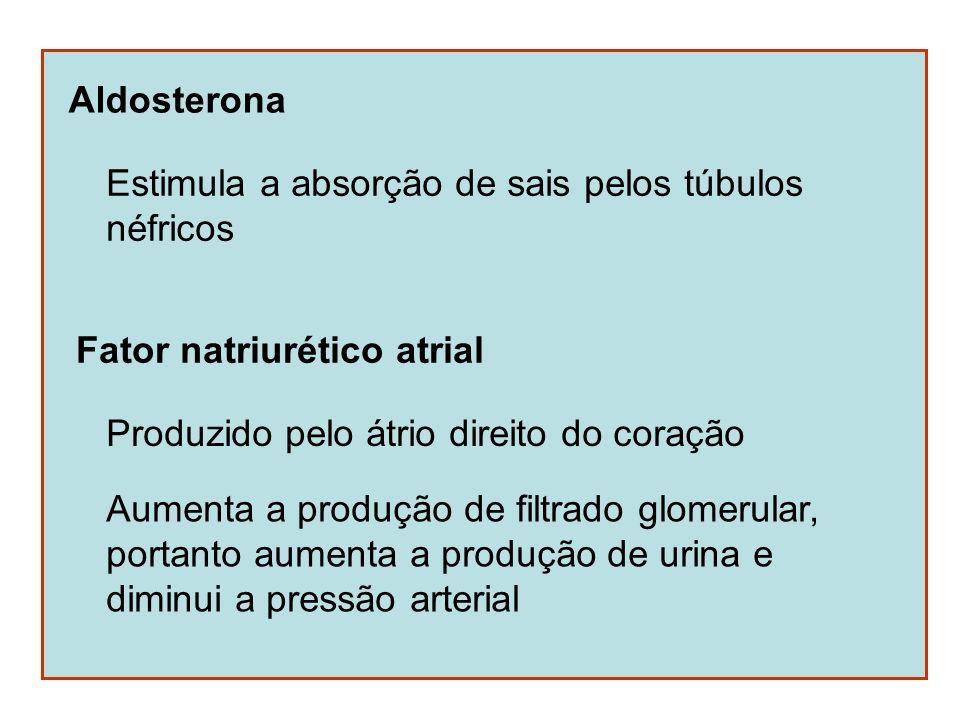 Aldosterona Estimula a absorção de sais pelos túbulos. néfricos. Fator natriurético atrial. Produzido pelo átrio direito do coração.