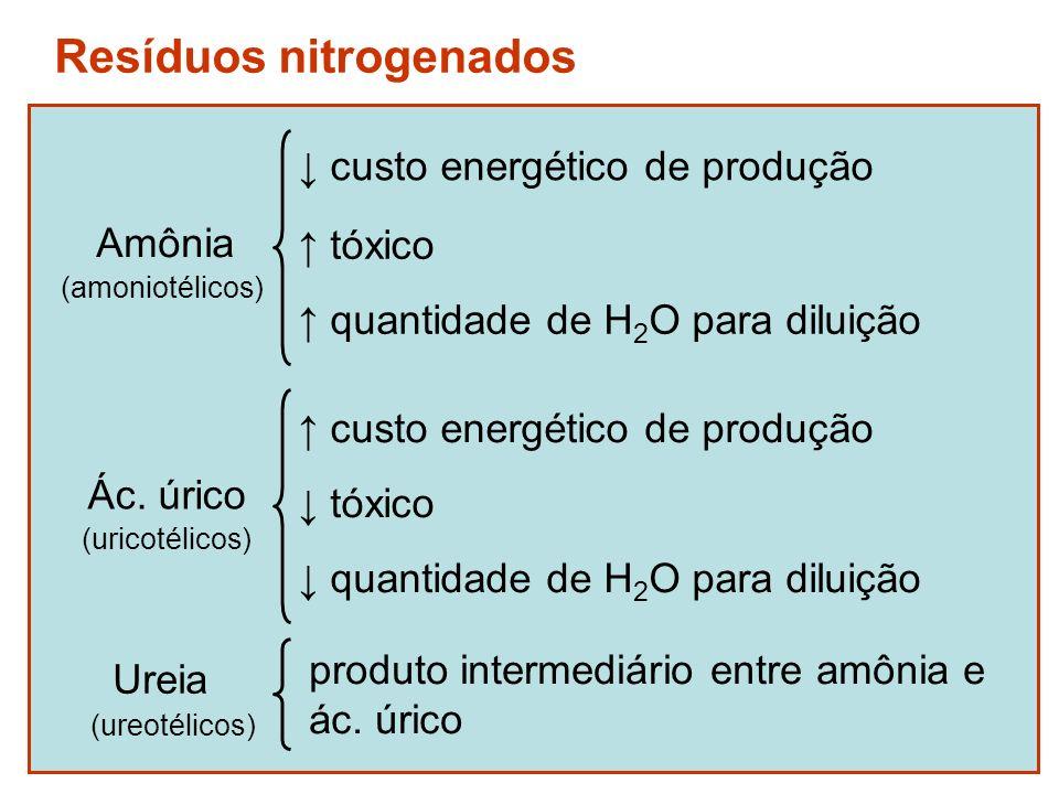 Resíduos nitrogenados