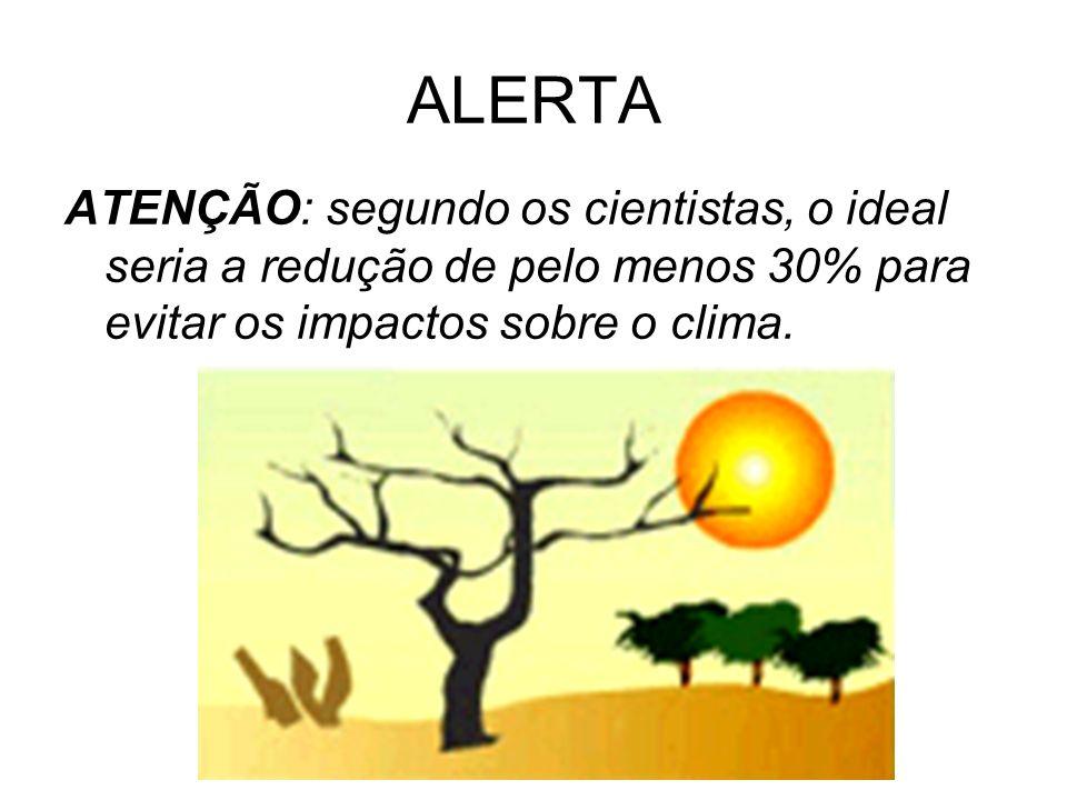 ALERTAATENÇÃO: segundo os cientistas, o ideal seria a redução de pelo menos 30% para evitar os impactos sobre o clima.
